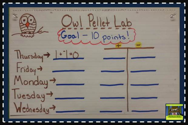 @thepensivesloth Owl Pellet Lab #5thgrade #classroommanagement