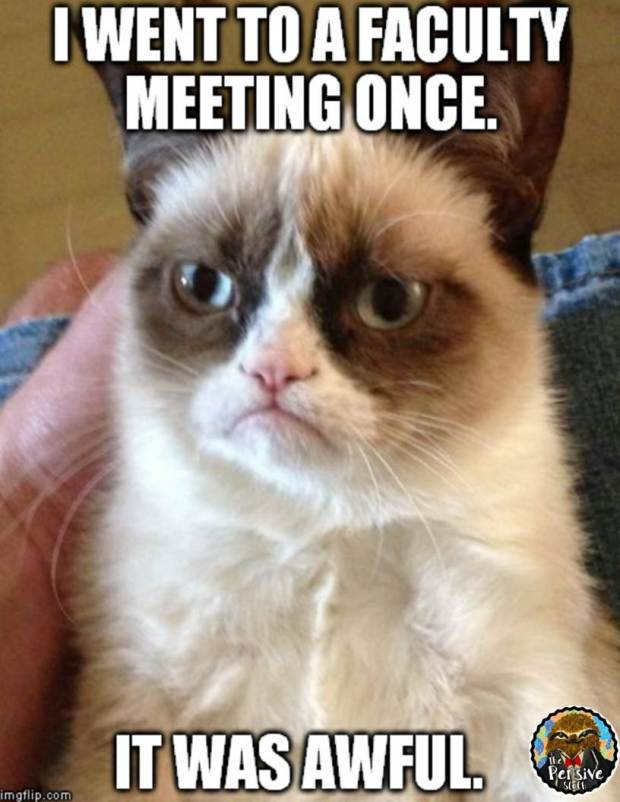 Grumpy Cat Faculty Meeting Meme from The Pensive Sloth